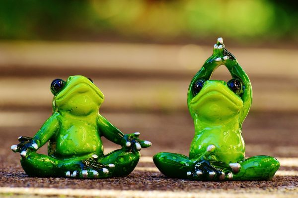 A photo of two small frog figurines doing yoga